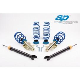 Kit combinés filetés AP suspension Volkswagen Scirroco jambe de force 55mm