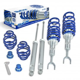Kit combines filetes Audi A6 C5 4B Passat 3B 3BG